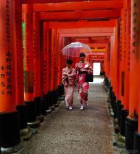 Around Japan - Fushimi Inari-taisha by Matias Masucci