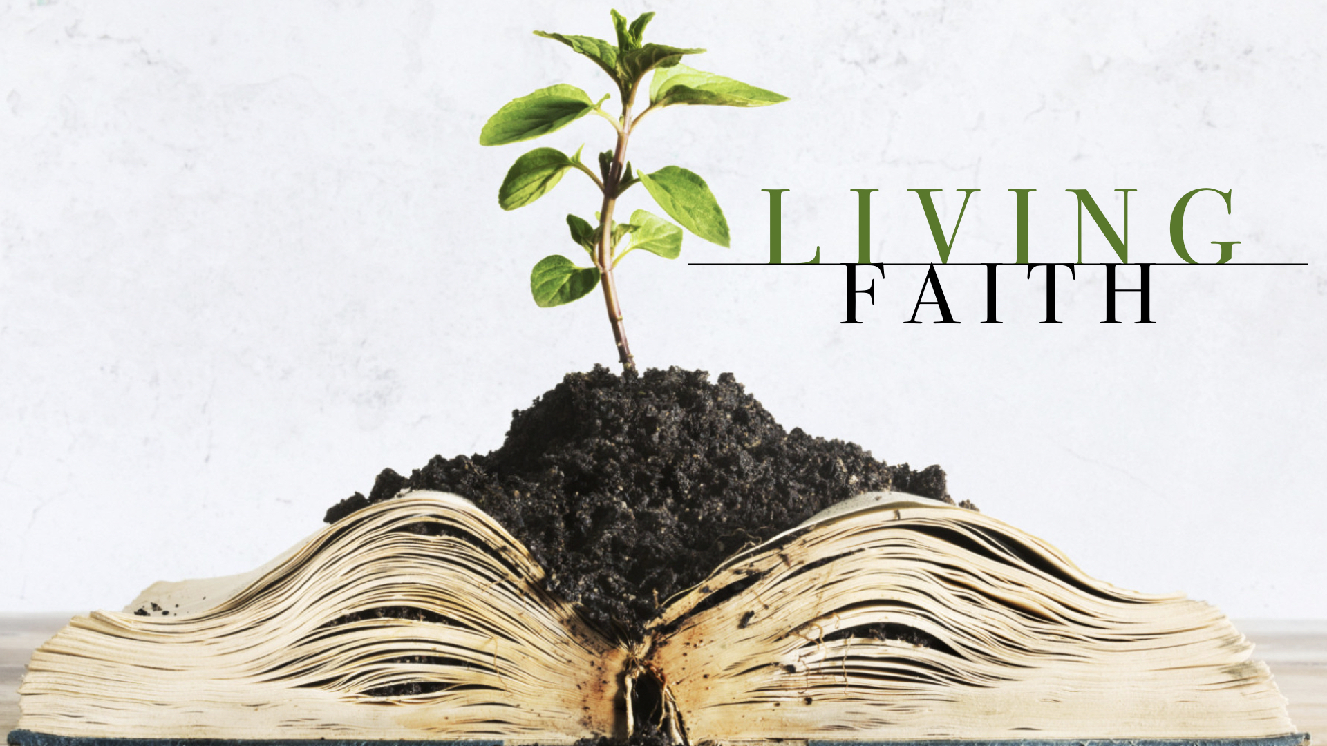What Does Living Faith Look Like