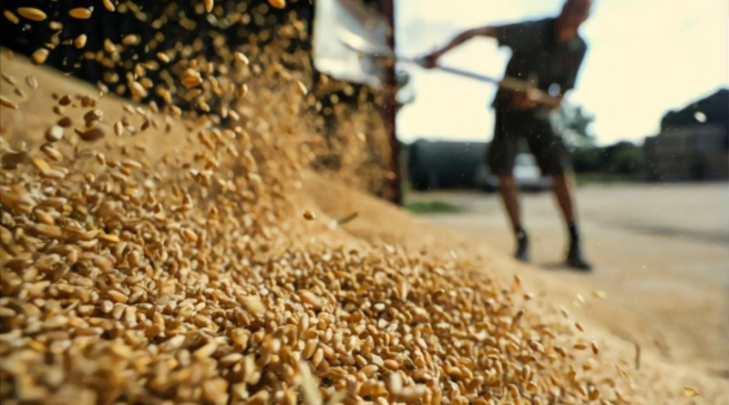 Cabinet hikes authorized capital of Food Corporation of India to Rs 10,000 Crore