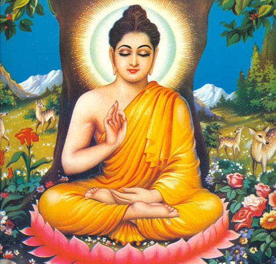 Gautam Buddha The Reformer Of Hinduism Indus Scrolls