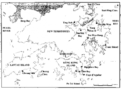 Oysters map of HK locations