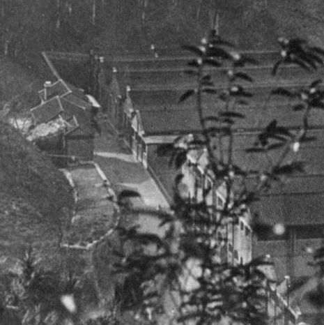 Kennedy Town slaughterhouse gwulo photo 1924