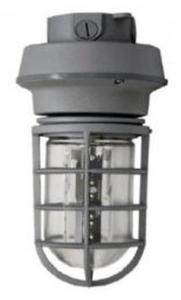 LED Vapor Tight Jelly Jars