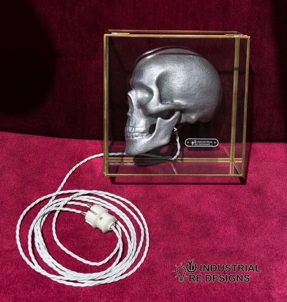 Schedel-skull-in-glazen-box-BINK-3