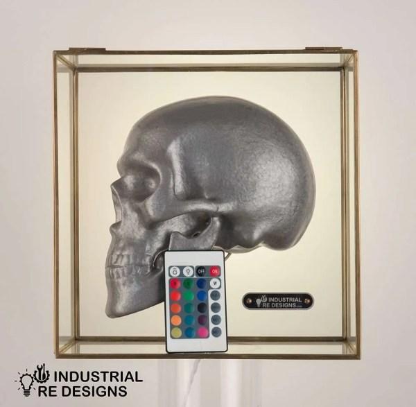 Schedel-skull-in-glazen-box-BINK-4