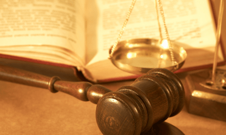 Amicus Briefs or 'Amicus Curiae,' at a Glance