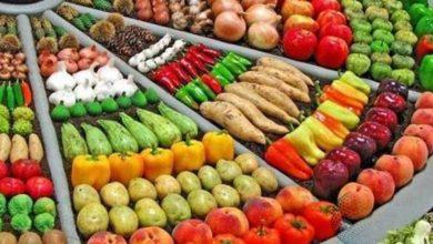 أهم المواد الغذائية التي يتم استيرادها من تركيا