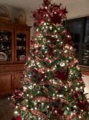 Scottie Tree 2015