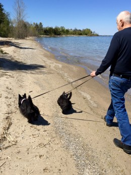 Indy and Lucy, Frank Murphy County Park, Egg Harbor, WI