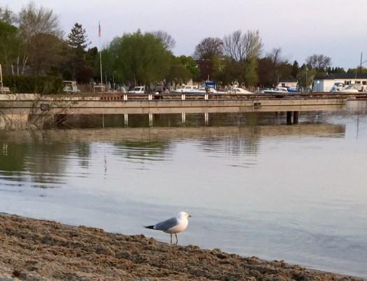 Fish Creek Beach