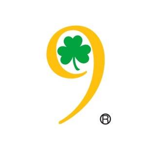9 Irish Brothers Traditional Irish Pub