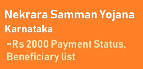 Karnataka Nekarara Samman Yojane Status