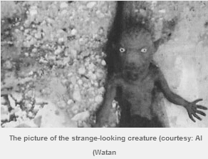 Creepy Middle Eastern Creature