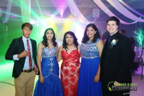 2016-04-02 Atkinson County High School Prom 2016 255