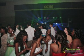 Clinch County High School Homecoming Dance 2014 Mobile DJ Services (14)