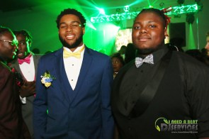 Lanier County High School Prom 2018 (35)