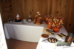 Tasha & Dalton Perry Wedding & Reception Twin Oaks Farms Mobile DJ Services (16)
