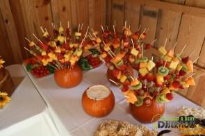 Tasha & Dalton Perry Wedding & Reception Twin Oaks Farms Mobile DJ Services (18)