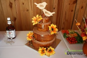Tasha & Dalton Perry Wedding & Reception Twin Oaks Farms Mobile DJ Services (19)