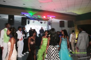 Ware County High School PROM 2014 Waycross School DJ (275)