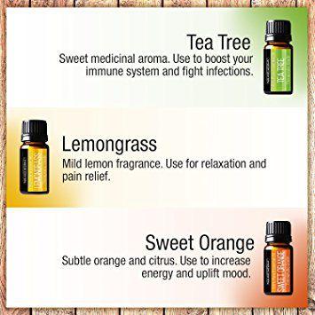Pure Body Naturals Essential Oils Gift Set
