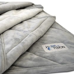 PetFusion Premium Plus Quilted Large Dog Blanket