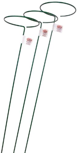Bosmere 48-Inch Plant Stem Support with 6-Inch Hoop