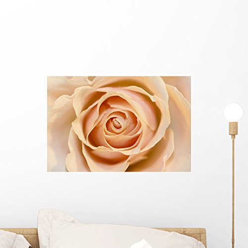 Rose Wall Mural by Peel and Stick Graphic