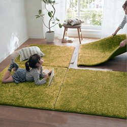 Ukeler Modern Large Green Shag Area Rugs Non Skid Washable Floor Accent Rugs
