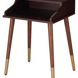 HOMES: Inside + Out FGI-1796C5 Zelus End Table Mid-Century Modern, Espresso