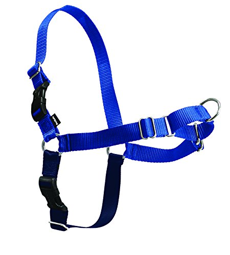 PetSafe Easy Walk Harness, Medium, ROYAL BLUE/NAVY BLUE for Dogs