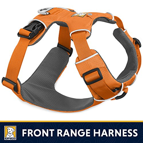 Front Range No-Pull Dog Harness with Front Clip