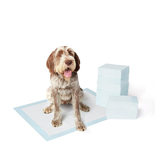 Basics Pet Training and Puppy Pads