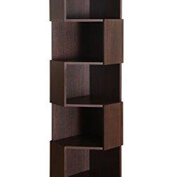 Furniture of America Bassey 5-Shelf Bookcase Display Stand