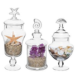 MyGift Set of 3 Seashell Handle Clear Glass Apothecary Jars