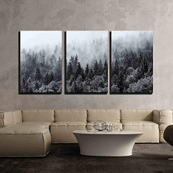 3 Piece Canvas Wall Art - Misty Forests of Evergreen