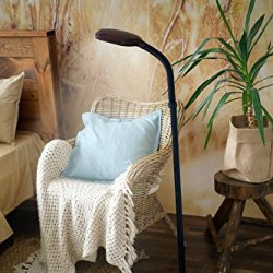 Kenley Natural Daylight Floor Lamp