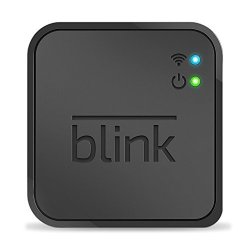 Additional Blink Sync Module for Existing Blink
