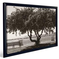 JP London Black & White Bonsai Tree Lucky Bench