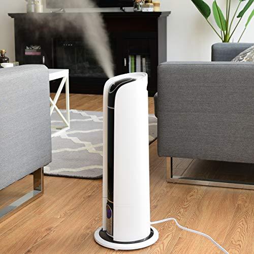 WATERJOY 6L Ultrasonic Humidifier, Cool Mist Diffuser
