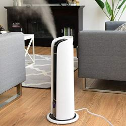 WATERJOY 6L Ultrasonic Humidifier, Cool Mist Diffuser