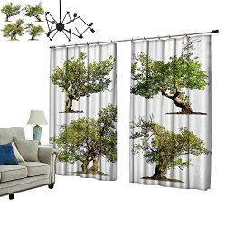 PRUNUS Window Curtain Drape with Hook Tree