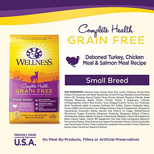 Wellness Complete Health Natural Grain Free Dry Small Breed Dog Food Wellness Complete Health Natural Grain Free Dry Small Breed Dog Food, Turkey, Chicken & Salmon, 11-Pound Bag.