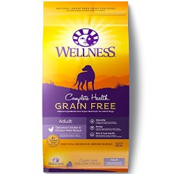 Wellness Complete Health Natural Grain Free Dry Dog Food