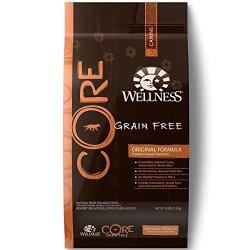 Wellness Core Natural Grain Free Dry Dog Food, Original Turkey