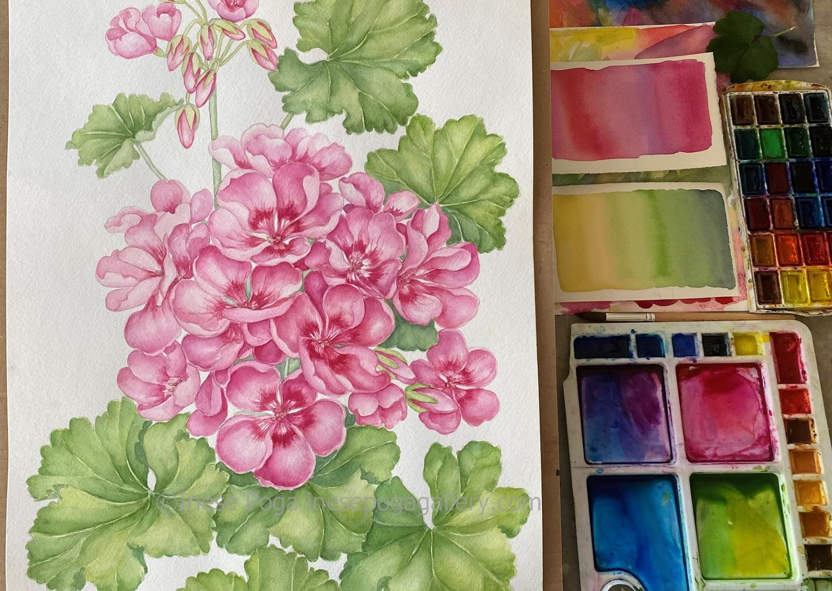 Pure, transparent watercolor – rose geranium