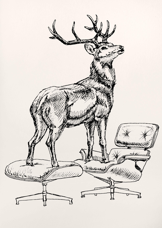 Hl Jr Eames Deer Deer Light And Other Joys