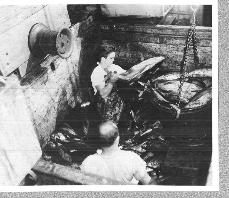 Port of San Diego commercial fishing history