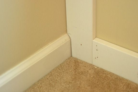 molding wall (2)