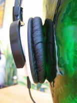 Das Ohr wird nicht gänzlich umschlossen